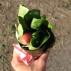 Flowers to my darling? Or a hippie hot dog in a festival in Cesar Chavez Park, Berkeley, CA. This tasty piece was made of nori sheet wrapped around lettuce and ... of course, sausage.